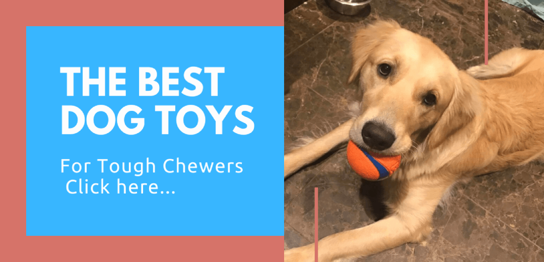 tough dog chew toys
