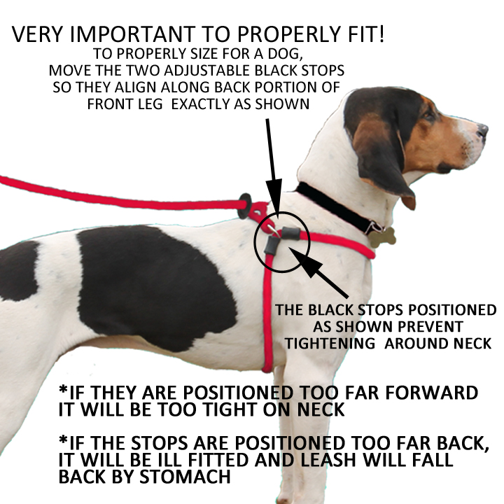 position harness lead